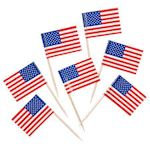 USA Toothpick Flags - Pack of 10