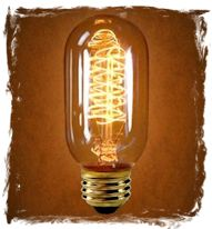 These unique vintage light bulbs are so cool... why not order one or two for your home?