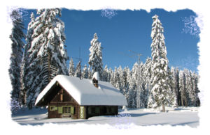 Order a minimum of ten Amateur Radio Christmas Cards depicting our snowy ham shack and receive your custom call sign on the front and whatever text you would like printed on the inside....Thanks for shopping with us!